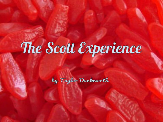 Copy of The Scott Experience