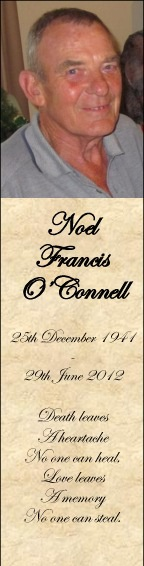 Noel O'Connell