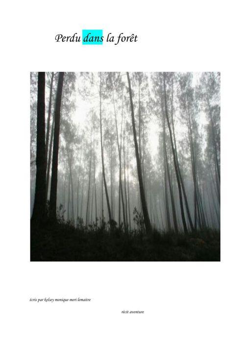 Perdu dans la forêt (3)