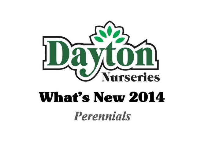 WhatsNew2014_perennials