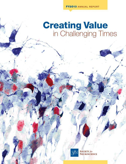 Society for Neuroscience FY 2013 Annual Report: Creating Value i