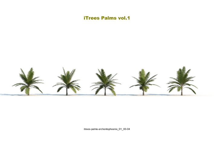 02_ITREES PALMS VOL.01