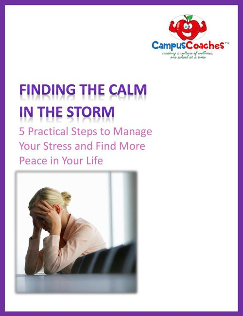 Teacher Stress E-Book