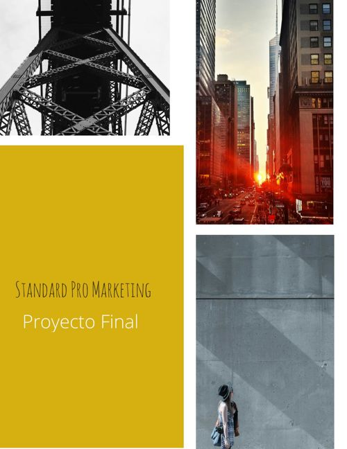Standard Pro Marketing (Proyecto Final)