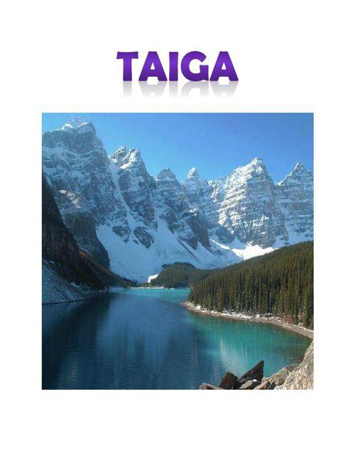 Taiga1