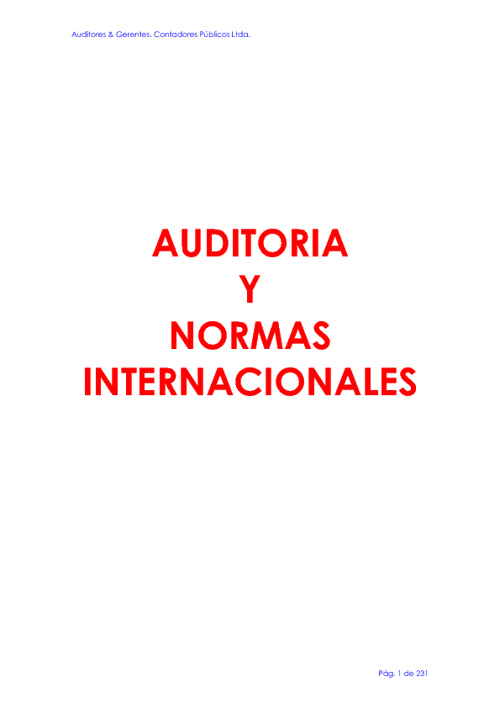 AUDITORÍA Y NORMAS INTERNACIO9NALES