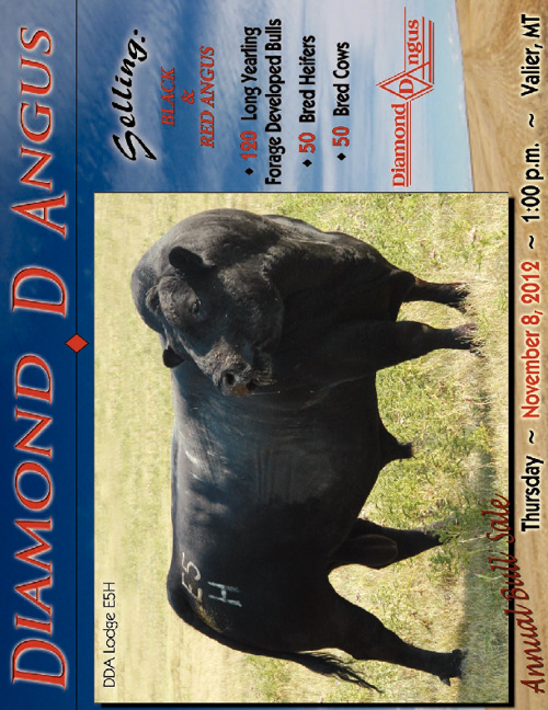 Diamond D Angus Sale Catalog 2012