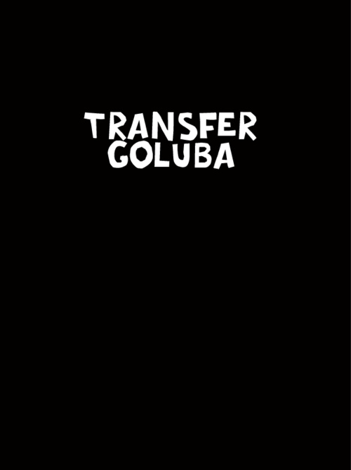 Transfer Goluba (skica_test)