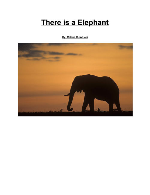 There is a Elephant