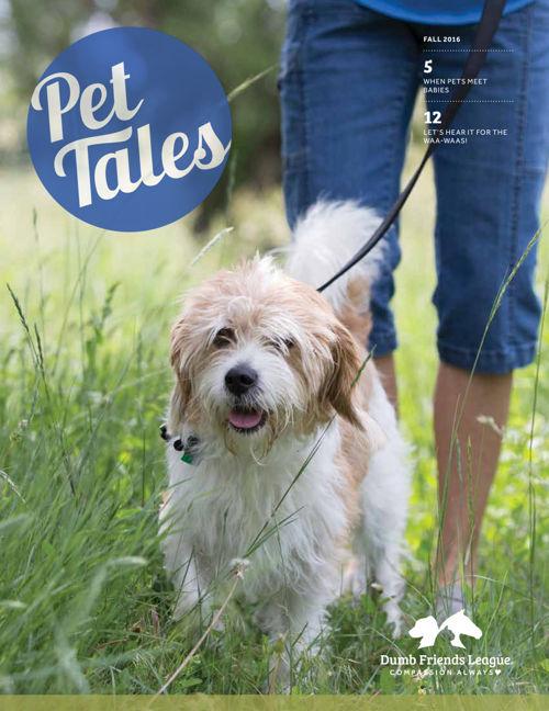 2016-PetTales-Fall