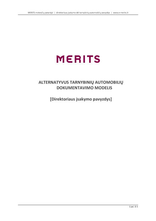 Alternatyvus tarnybinio automobilio dokumentavimo pavyzdys