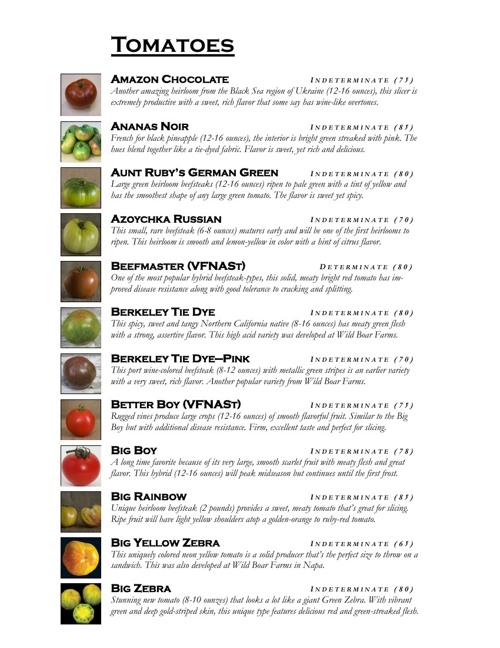 2013 MIX Garden Vegetable Starts
