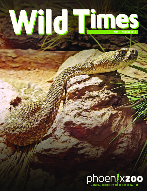 Wild Times| May-August 2016