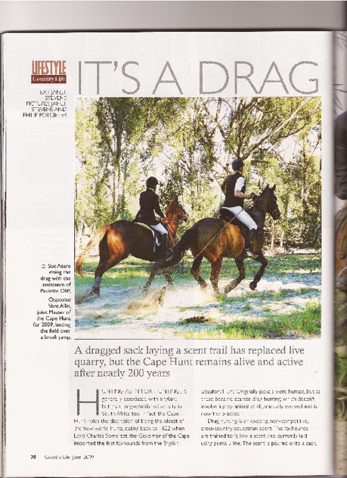 Horse Articles - Page 3