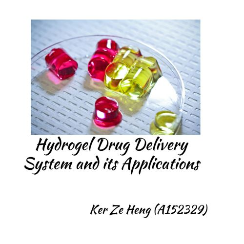 Hydrogel Drug Delivery System and its Application