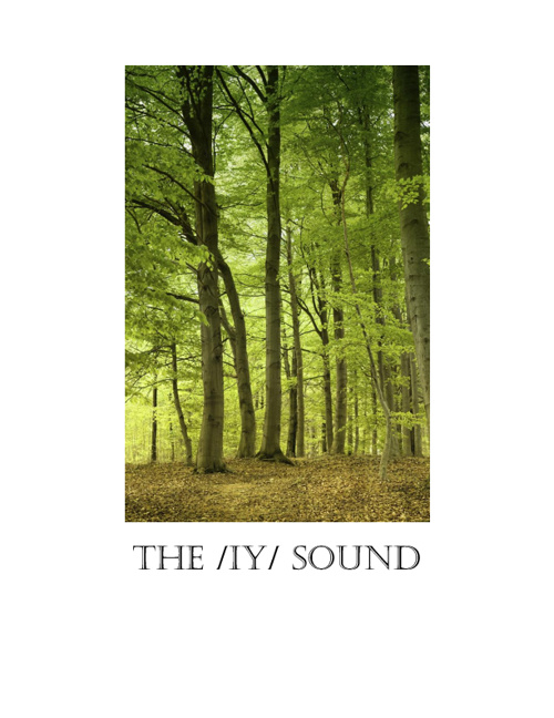 Copy of The /iy/ sound