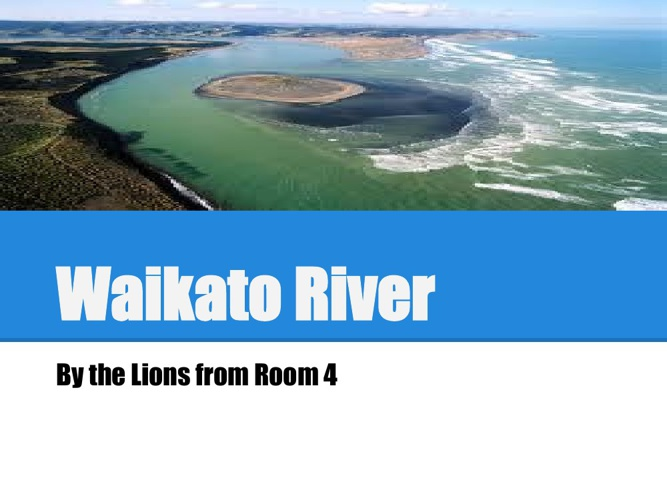 Waikato River By The Lions