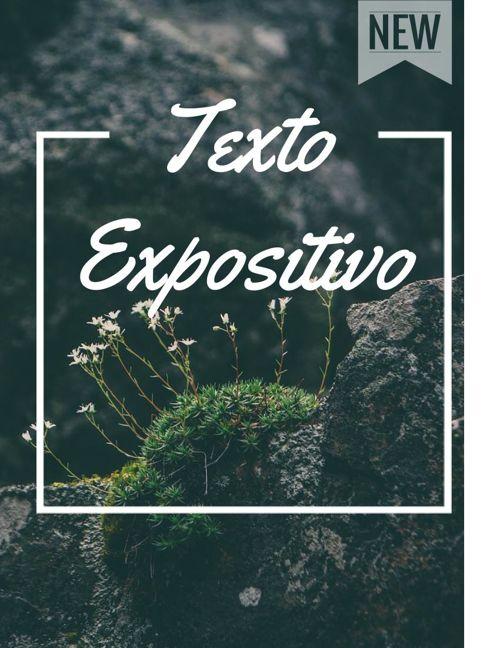17) Denhi A. Neri Corona 2°D-1 Texto expositivo