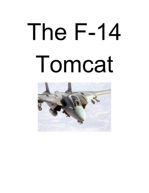 F-14Tomcat
