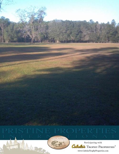 Waldo 10 acres