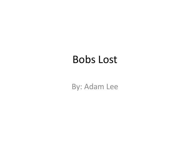 Bobs Lost