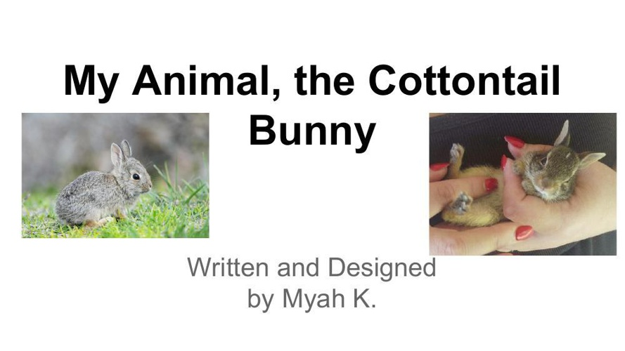 Myah_ About MY Animal