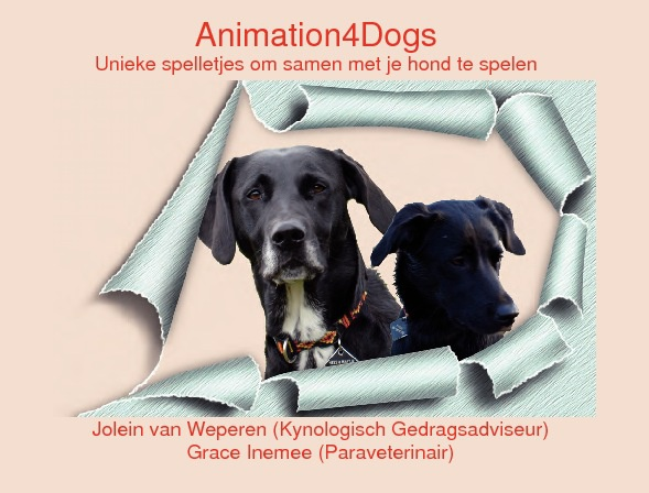 Animation4Dogs