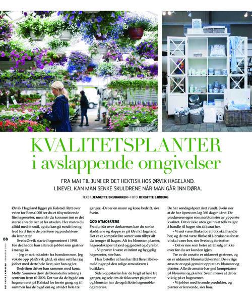 Det skjer i Kragerø sommer 2016