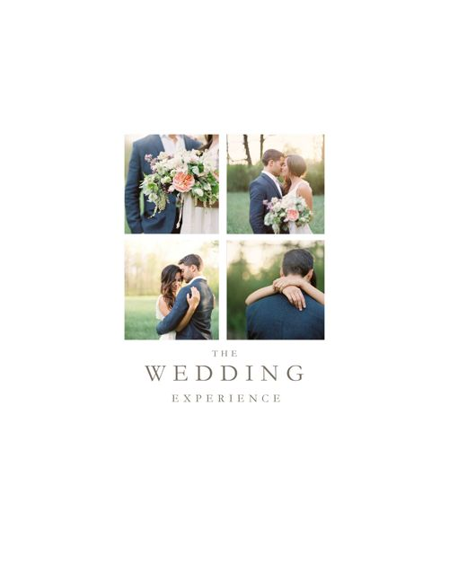 The Wedding Experience 2017 & 2018