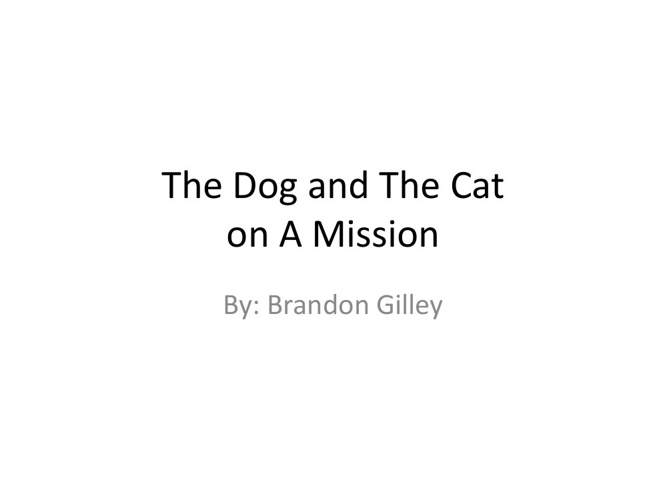 The Dog and The Cat on a Mission