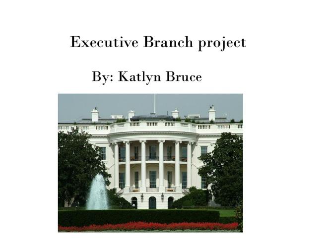 Civics executive