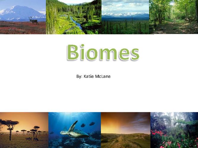 Final Biome Book!