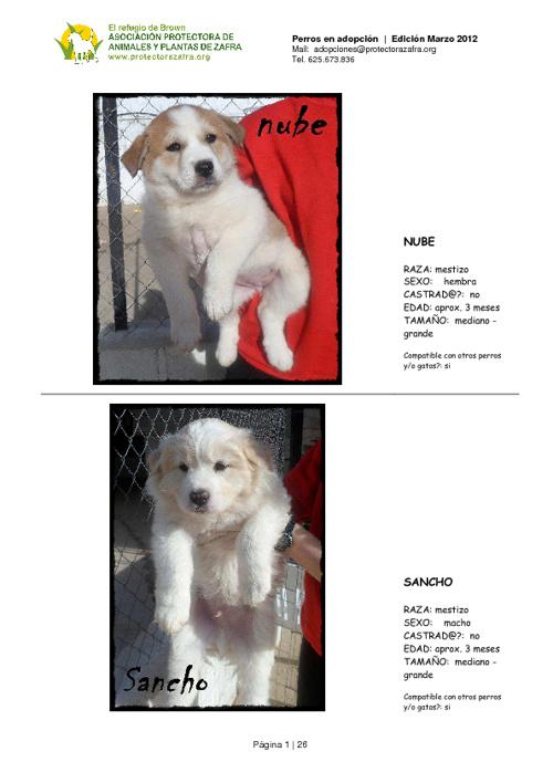Perros en adopción Marzo 2012. Asoc. Protectora Zafra (Badajoz)