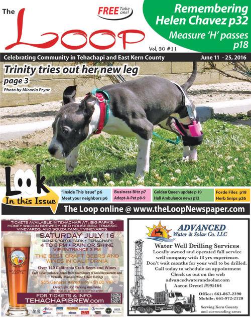 The Loop Newspaper - Vol 30 No 11