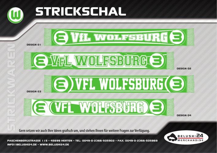 VfL Wolfsburg Sommer 2013