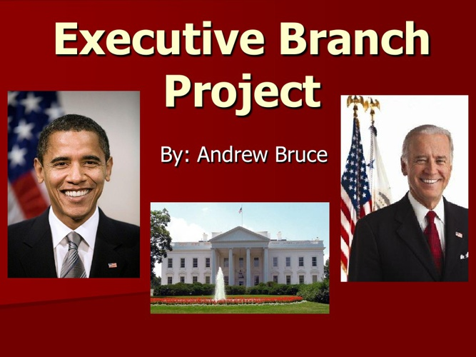 Executive branch project