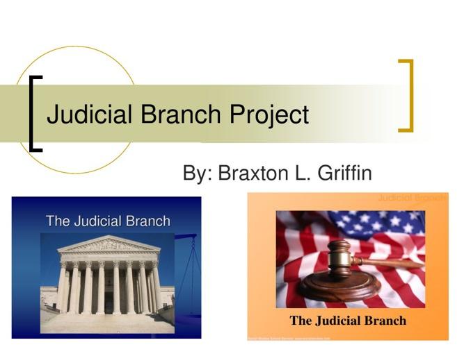 Judicial Branch Project