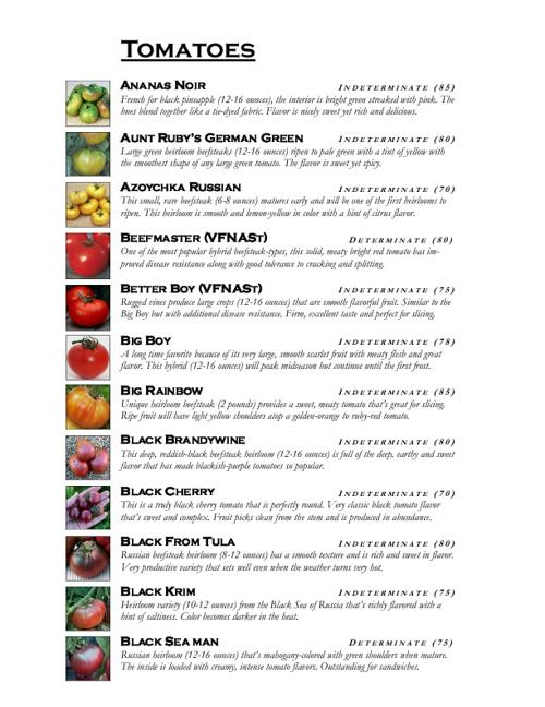 Spring Vegetable Starts 2012