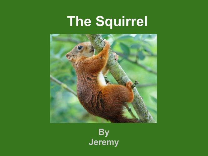 jeremy squirel