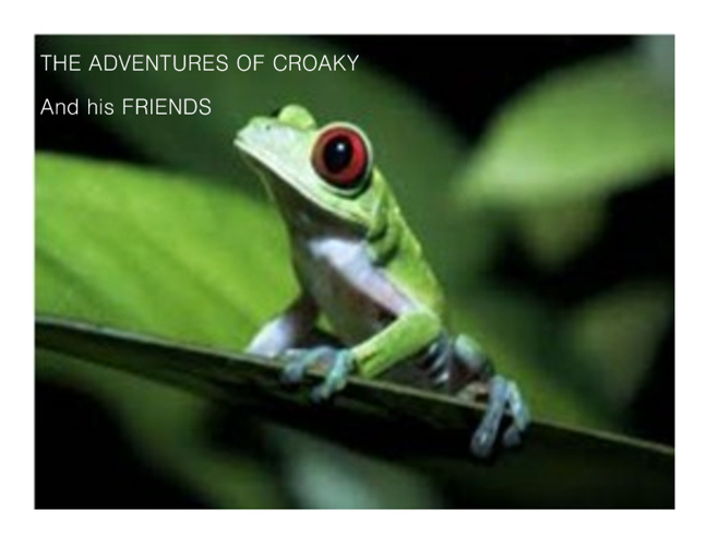 New FlipThe Adventures of Croaky and Friends