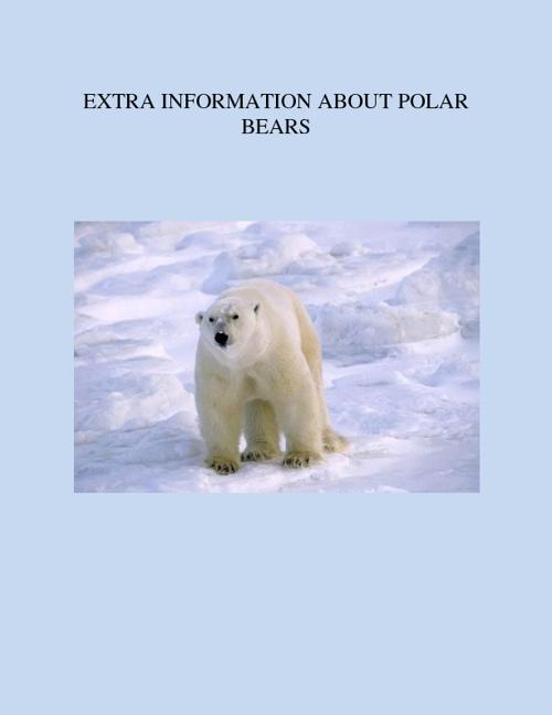Bear Information