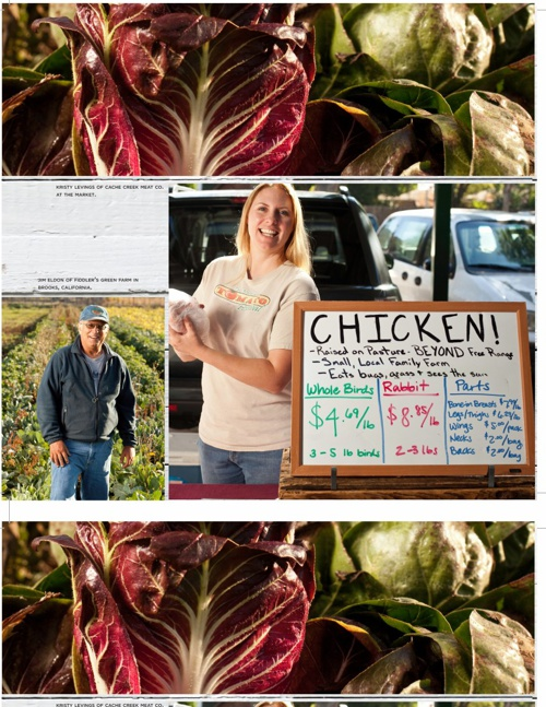 The Story of the Davis Farmers Market