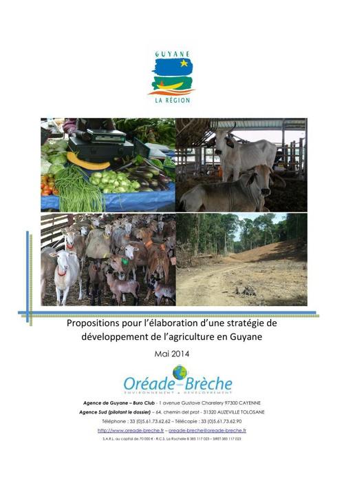 Stratégie de développement agricole (présentée le 2014-09-09)