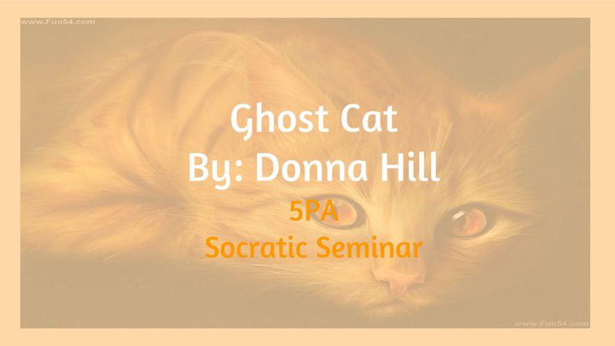 Ghost Cat Socratic