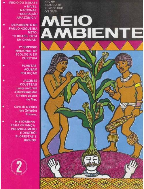 Revista Meio Ambiente 2