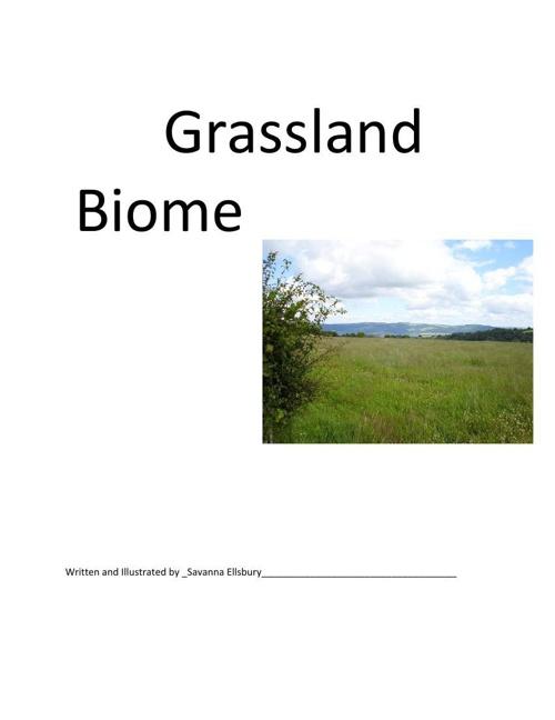 Grassland-Savanna