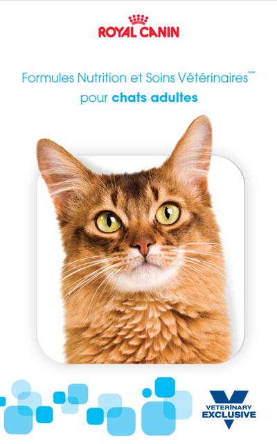 FR_SKW377_ Feline_Adult