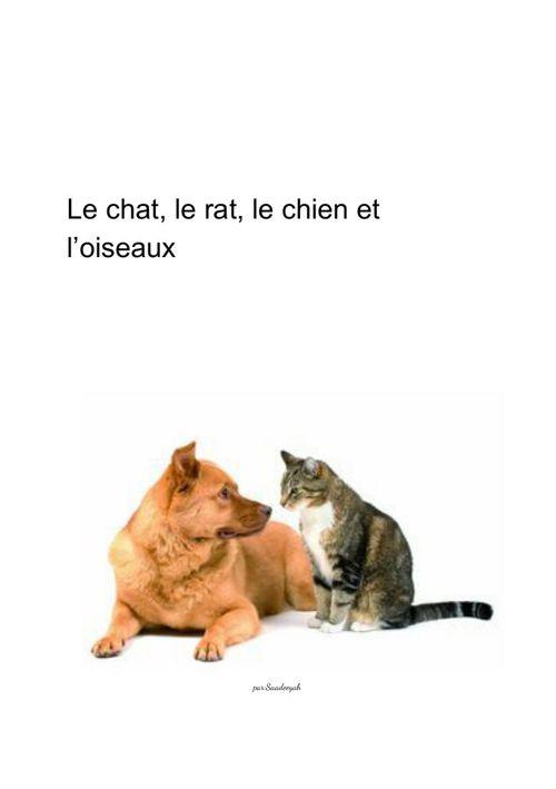 Le chat rat chien et oiseaux