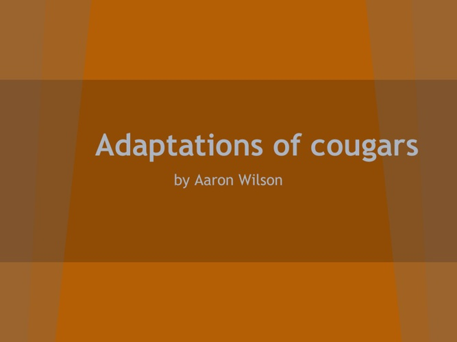 Cougar adaptations