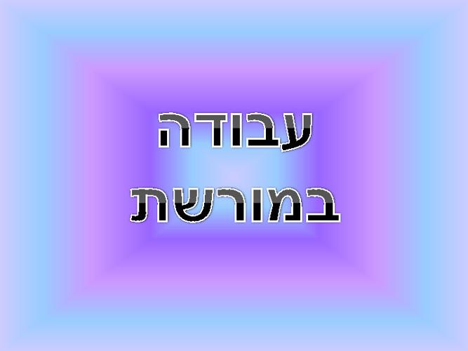 עבודה במורשת דנה ורתם סיור בירושלים